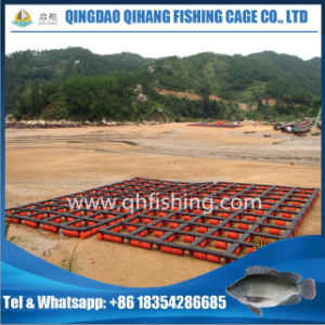 Anti-UV Cage Fish Farming Net Cage System in Uganda pictures & photos