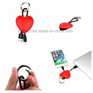 Fashion Leather Heart Lightning USB Cable/Keychain USB Cable pictures & photos