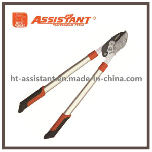 Professional Lopping Shears High Carbon Steel Forged Loppers pictures & photos
