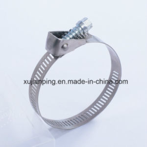 12.7mm Bandwidth Quick Release Hose Clamp pictures & photos