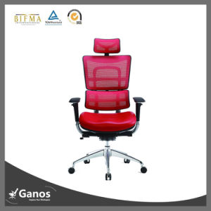 New Design Ganos Seating Mesh Back and Leather Office Chair pictures & photos