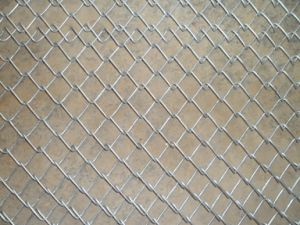 Wholesale Galvanized PVC Coated Chain Link Fence for Sale pictures & photos