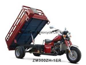 Zm300zh-1er Tricycle 150cc/200cc/250cc/300cc pictures & photos