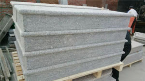Modern Fashion Granite Stair Stone Large Stepping Stone pictures & photos