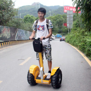 300cc Self Balancing 2 Wheels Electric Scooter for The Disabled pictures & photos
