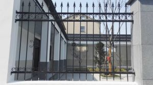 Epoxy Power Coating Galvanized Iron Welded Gate & Fencing pictures & photos