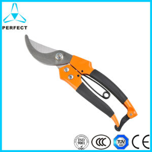 Stainless Steel Cutting Grape Scissors pictures & photos