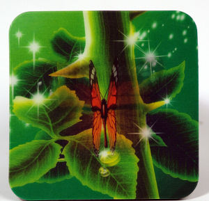 Butterfly Flip Effect 3D Cup Coaster Mat pictures & photos