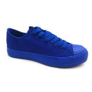 Full Color Style Canvas Shoes for Women (ET-YH160107W) pictures & photos