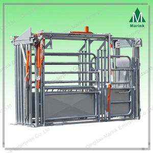 High Quality Powder Coated Cattle Chutes/Crush-American pictures & photos