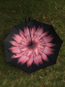 New Design Double Canopy Reverse Umbrella pictures & photos