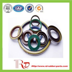 Viton Oil Sealing/ Skeleton Oil Seals pictures & photos