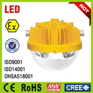 Hazardous Area LED Flood Light