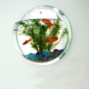 Mini Mirror Acrylic Fish Aquarium pictures & photos