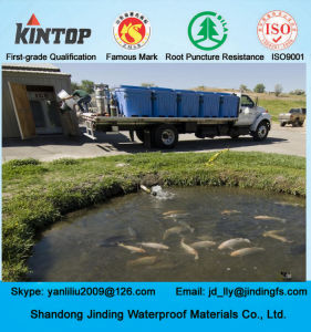 Pond Liner 1mm HDPE Geomembrane with ASTM Test pictures & photos