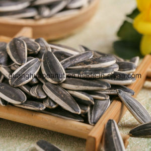 Perfect Quality Sunflower Seeds From Shandong Guanghua pictures & photos