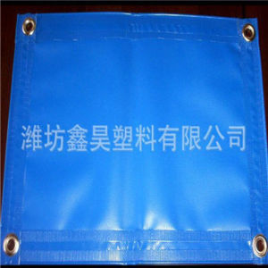 PE Tarpaulin Reinforced with PP Rope in Hem and Heat Sealed Edges pictures & photos