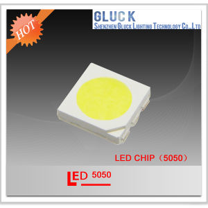 LED Light 5050 SMD LED for Decoration