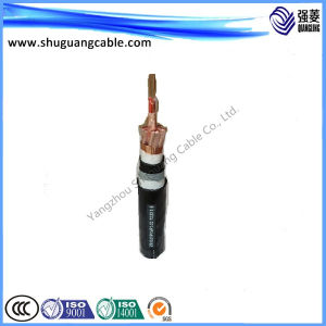 Low Smoke/Halogen Free/PE Insulated/Cu Tape Overall Screened/Swa/PE Sheathed/Computer Cable pictures & photos