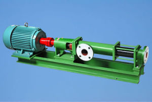 G Series Slurry Transfer Single Screw Pump pictures & photos