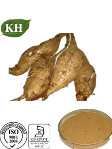Kudzu Root Extract Puerarin 25%, 40% Isoflavones 40% pictures & photos