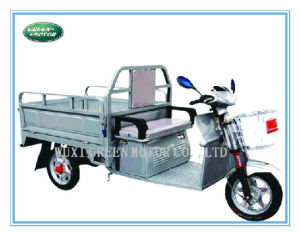 48V 500W Electric Tricycle, Electric Vehicle (Gmxw-1)