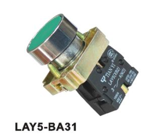 Lay5-Ba31 Flush Spring Return Pushbutton Switch pictures & photos