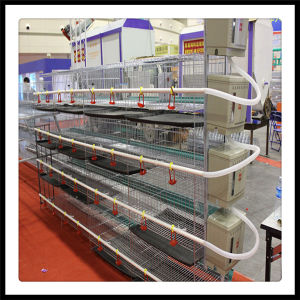 Best Price Poultry Cage for Broilers pictures & photos