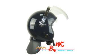 Anti-Riot Helmet with Visor pictures & photos