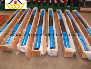 Oil and Gas Equipment Glb120-21gw Double Heads Screw Pump/PC Pump/Well Pump for Sale pictures & photos