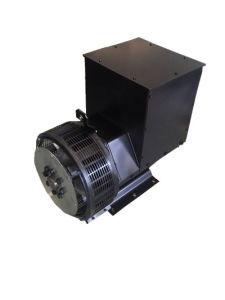 4 Pole Permanent Magnet China Generator Alternator Price pictures & photos