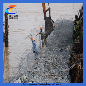 2014 China PVC Coated Iron Hexagonal Gabion Mesh pictures & photos