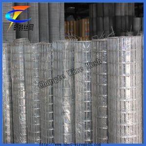 Galvanized & PVC Coated Welded Wire Mesh pictures & photos