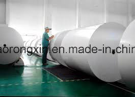 Single Side PE Coated Paper for Packaging pictures & photos