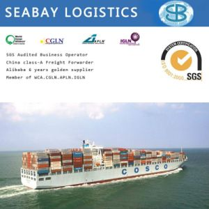 Cheapest Sea Freight Charges China to India pictures & photos