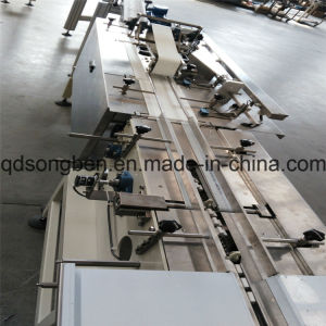 Cracker Packing Machine with Feeder pictures & photos