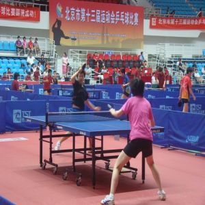 Indoor PVC Sports Flooring for Table Tennis pictures & photos