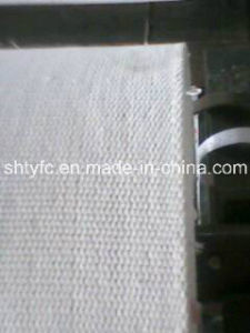 Airslide Filter Cloth for Filtraton Industry pictures & photos