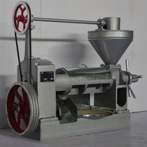 Screw Type Jatropha Oil Press pictures & photos
