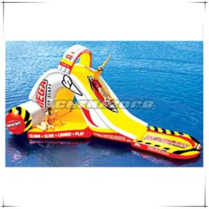 Wonderful Full Painted Inflatable Water Slide Factory Price