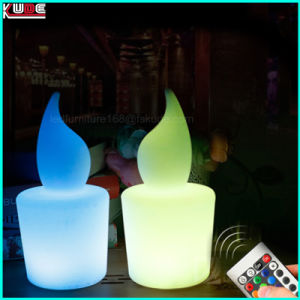 RGB Programmable Christmas Outdoor Light Christmas Decoration pictures & photos