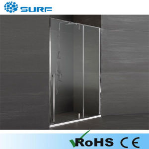 Newly-Designed Luxury Simple Shower Door (SF9A005-1)