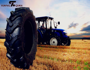 R1 Pattern Tractor Tyre (11.2-24) pictures & photos