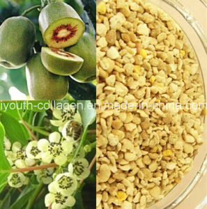 Bee Pollen, Top Level, Pure Wild Kiwifruit Bee Pollen, Anticancer, Whitening, Lose Weight, No Antibiotics, No Heavy Metal, No Pathogenic Bacteria, Health Food pictures & photos
