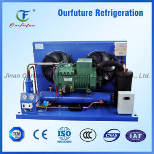 Bitzer Compressor Unit Chinese Good Supplier