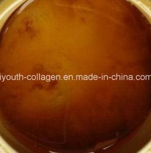 Honey Queen, 100%Natural Organic Chinese Herbal Medicine Honey, Wild/Soil Honey, Ripe Honey, No Antibiotics, No Pesticides, No Pathogenic Bacteria, Health Food pictures & photos