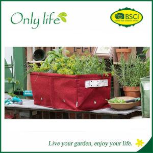 Onlylife Reusable Grow Bag Garden Fabric Planter pictures & photos