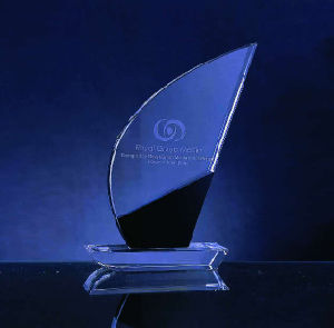 Nice Design Crystal Award (WHTC-C0156)