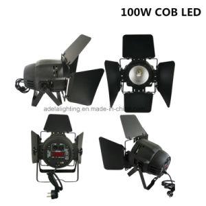 100W RGBW 4in1 LED COB PAR pictures & photos