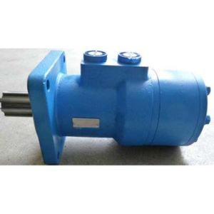 Bm5s Orbit Hydraulic Motor with Disk Valve pictures & photos